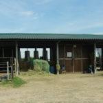 Pferdevilla - Offenstall
