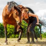 Pferde gesunderhaltend trainieren