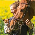 Pferdefachwirt KPA