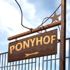 Planung & Wirtschaftlichkeit - Ponyhof
