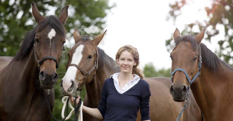 Vorbereitungslehrgang Pferdewirt