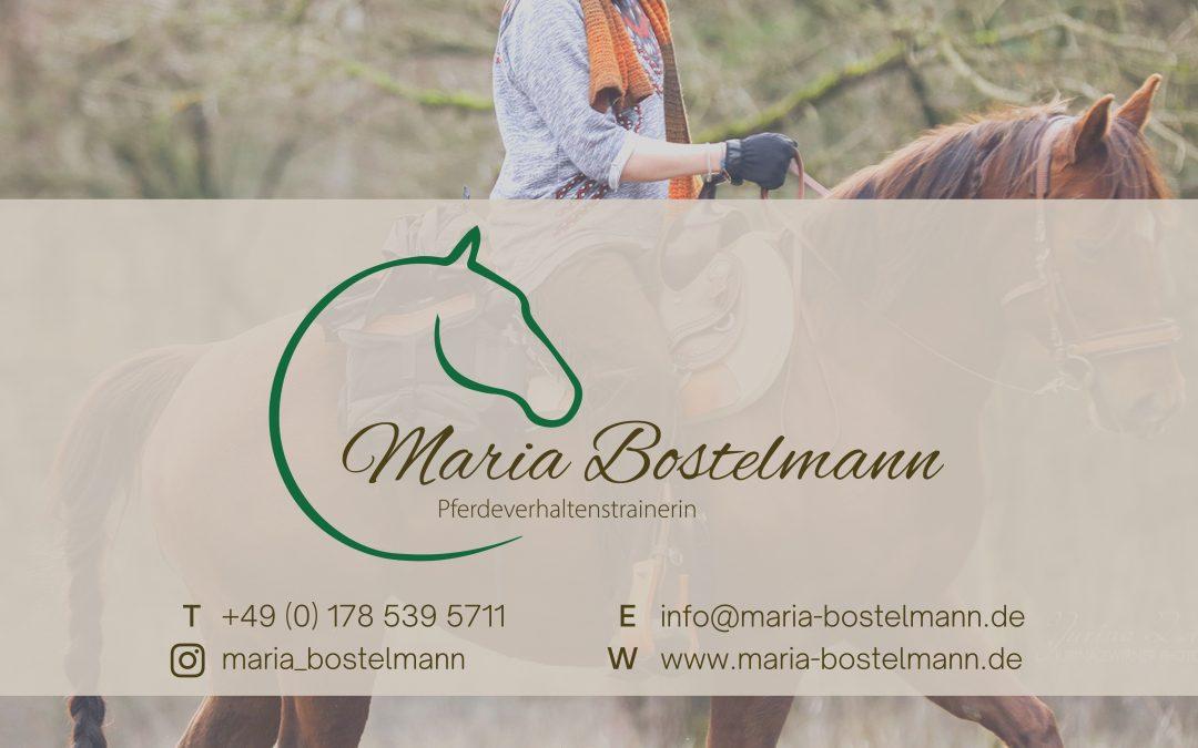 Maria Bostelmann – Pferdeverhaltenstrainerin