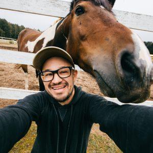 IT-Sicherheit für Pferdeleute